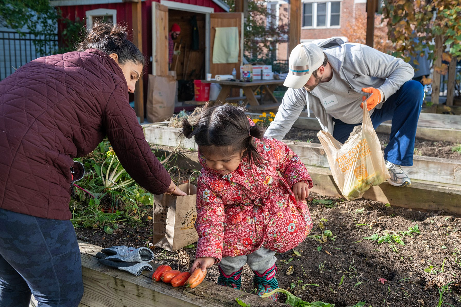 Exeter Street Garden Cleanup