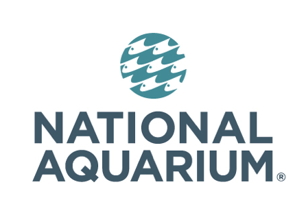 JOBS: National Aquarium Seeking Animal Rescue Husbandry Aide